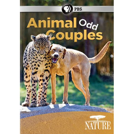 Nature: Animal Odd Couples (DVD) - Famous Couples From Movies For Halloween