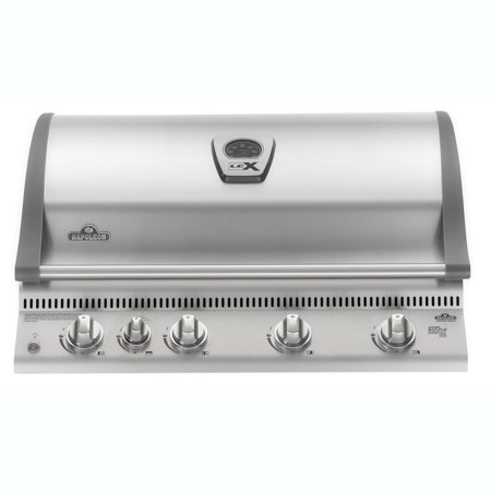 Napoleon 21'' Built In LEX 605 Stainless Steel 5 Burner Propane Gas Grill (Best Built In Outdoor Propane Grill)