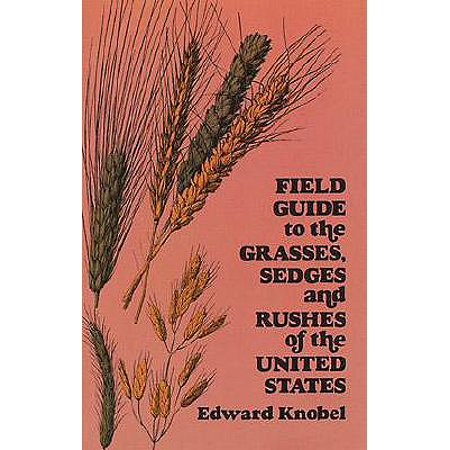 Field Guide to the Grasses, Sedges, and Rushes of the United