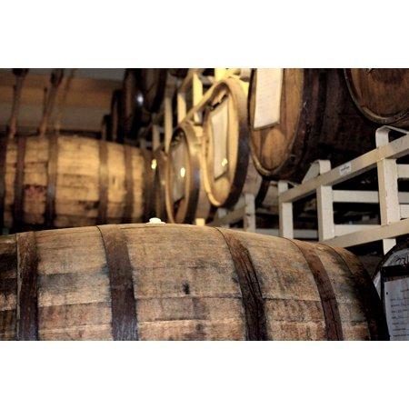 LAMINATED POSTER Aging Barrels Barrels Whisky Barrels Oak Barrels Poster Print 24 x