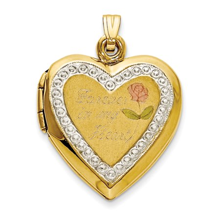 (10kt Two Tone Yellow Gold Forever In My Heart Locket Pendant Charm Necklace For Women)