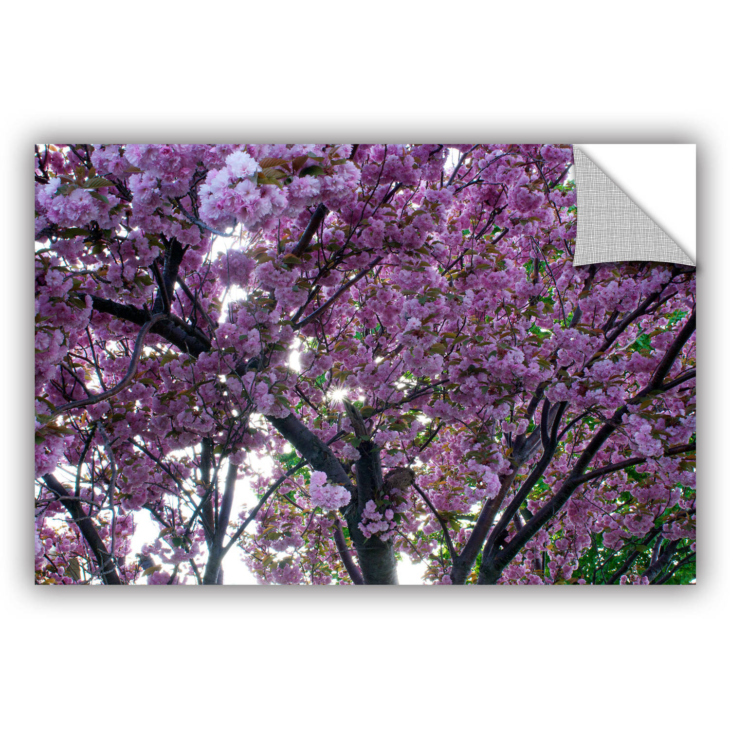 "ArtWall Dan Wilson ""Spring Flowers"" ArtAppealz Removable Wall Art"