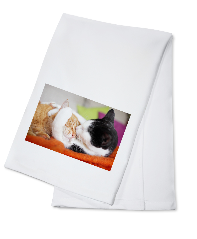 Click here to buy Two Cats Hugging Lantern Press Photography (100% Cotton Kitchen Towel) by Lantern Press.