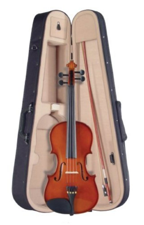 Palatino VN-350 Campus Violin Outfit, 4 4 Size Multi-Colored by Palatino