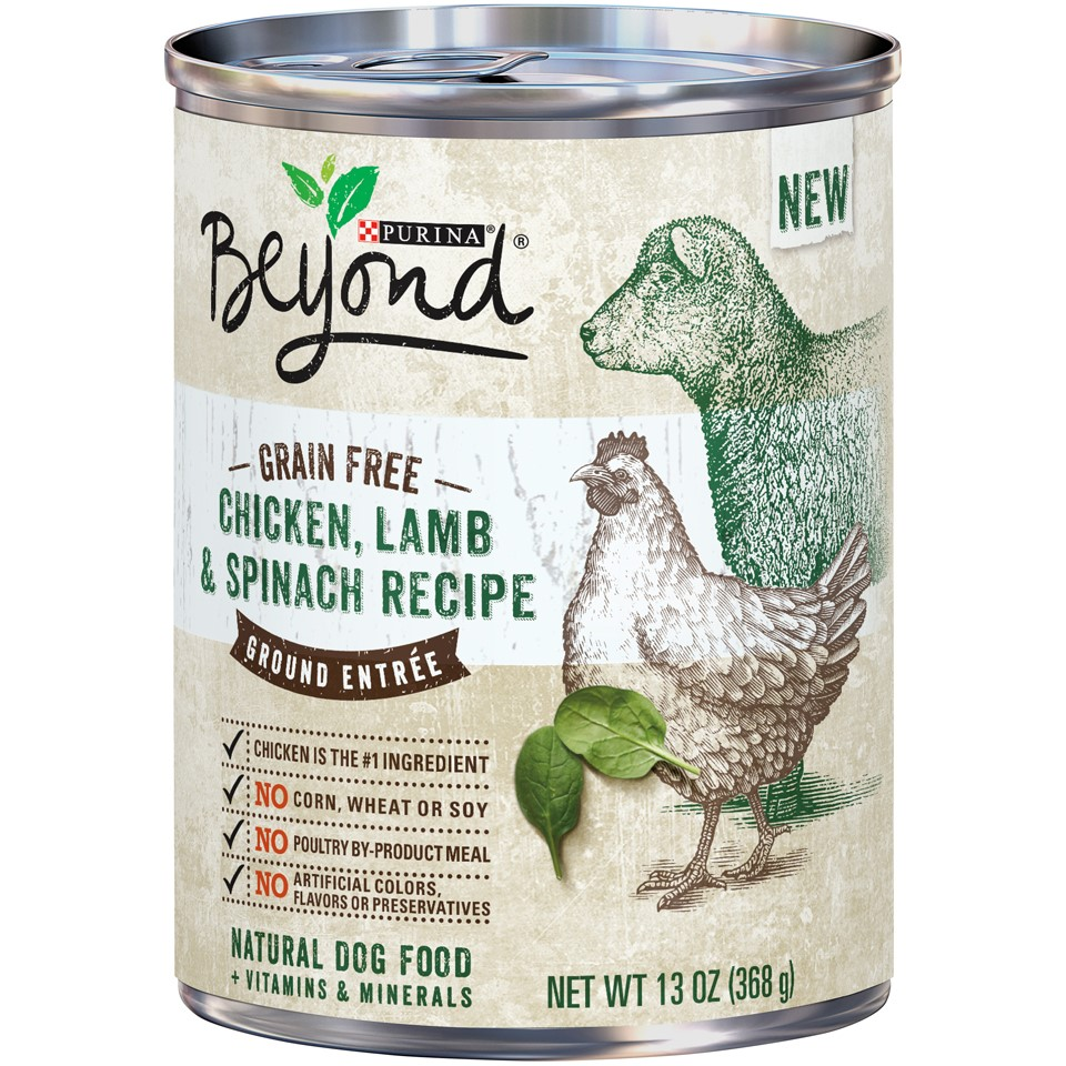 Purina Beyond Grain-Free Chicken, Lamb & Spinach Recipe Ground Entree Wet Dog Food, 13-Oz, Case of 12