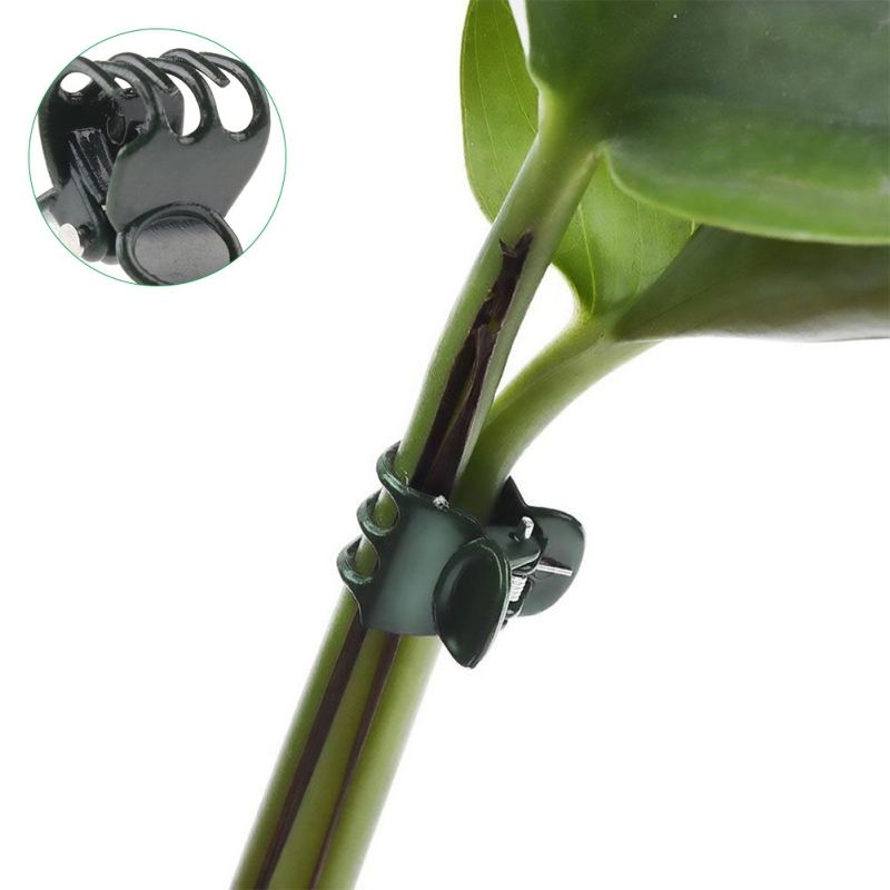 50PCS Plant Fixing Clips Garden Flowers Tied Bundle Branch Clip Clamping Tools
