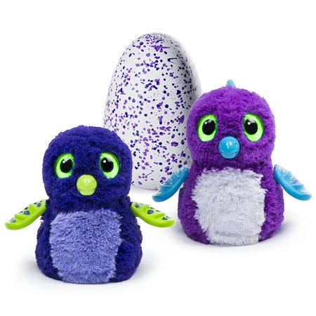 Draggle  Blue Purple Egg  Hatchimals Live Inside Of Eggs  Hold Them To Hear Their Heartbeats  Flip Them For Fun  Tap And Theyll Tap Back     By Hatchimals