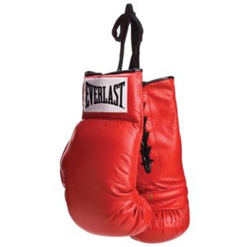 Everlast Autograph Boxing Gloves - Lace