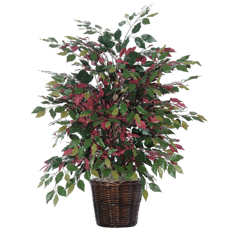 Vickerman 4' Artificial Capensia Extra Full in Rattan Basket