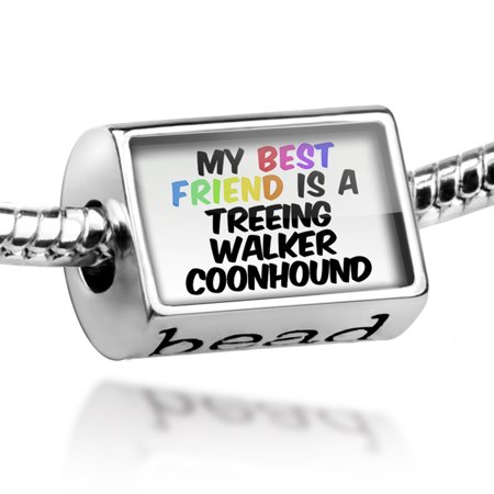 Bead My best Friend a Treeing Walker Coonhound Dog from United States Charm Fits All European Bracelets