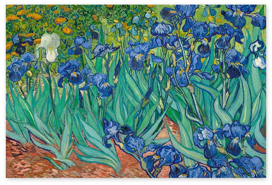 Awkward Styles Irises Classic Poster Wall Decor Dutch Artist Vincent Van Gogh Vincent Van Gogh Poster Wall Art Irises Painting Van Gogh Fans Gifts Living Room Decor Ideas Impressionist Painter Art