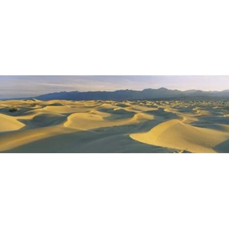 Sand dunes in a desert Grapevine Mountains Mesquite Flat Dunes Death Valley National Park California USA Poster Print (Desert Mountain Park Halloween)