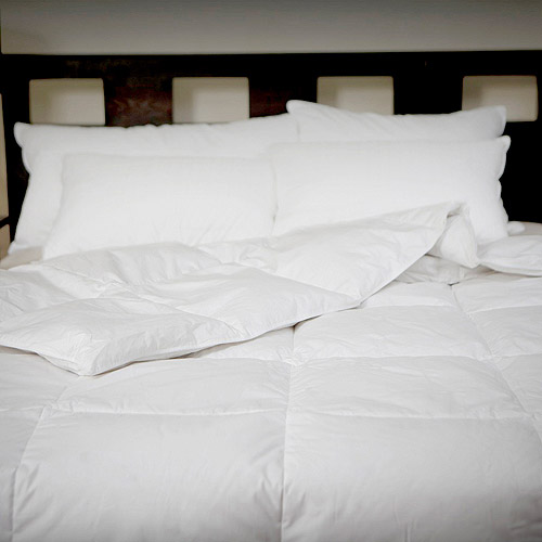 Cozy Classics All Seasons Down Comforter