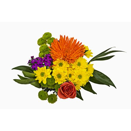 Grower2Buyer Fresh Cut Flowers; Fusion Mixed Bouquet; 6 Stem Bunch