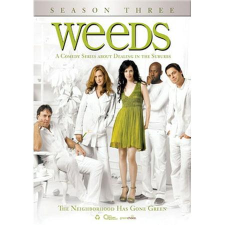 Weeds: Season Three (DVD) (Weeds Tv Series)