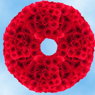 Globalrose 250 Fresh Cut Red Roses For Mothers Day   Classy Roses   Fresh Flowers Wholesale Express Delivery   The Perfect Mothers Day Gift