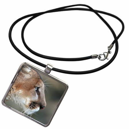 3dRose Profile of head of captive Mountain Lion, Montana - Necklace with Pendant (ncl_251192_1)
