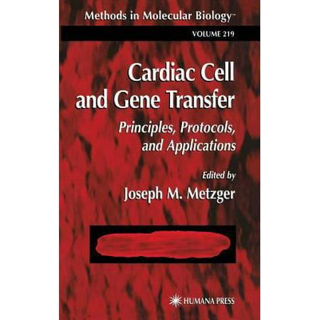 Cardiac Cell And Gene Transfer