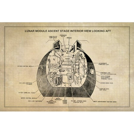 Marmont Hill u0022Ascent Stageu0022 Licensed Smithsonian Print on Canvas