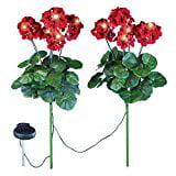 Geranium Flowers Solar Light Stakes, Set of 2-Red
