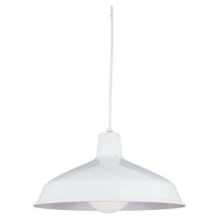 Sea Gull Lighting 6519 Painted Shade 1 Light Barn Light Pendant