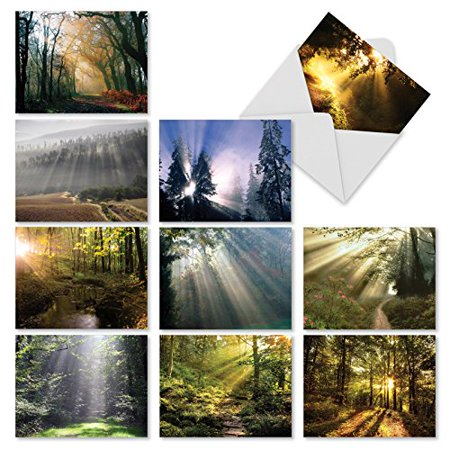 'M1735BN SHINING THROUGH' 10 Assorted All Occasions Note Cards Feature Sunlit Landscapes with Envelopes by The Best Card Company
