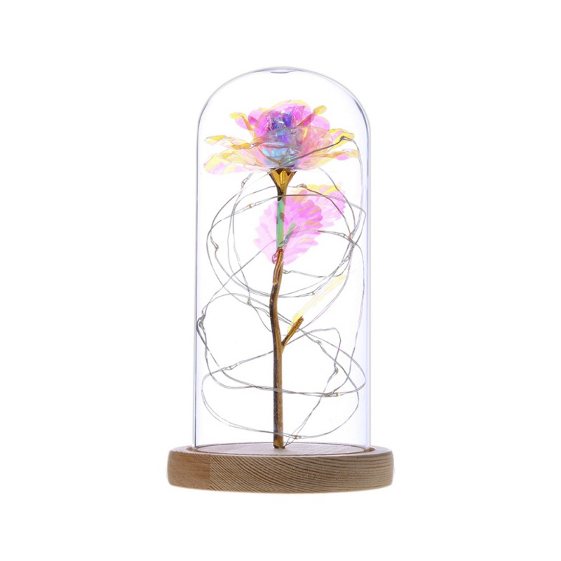 20LED Wooden Base Night Lights Rose Glass Dome Copper Wire String Lights Home