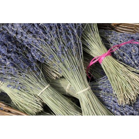 Cote Dazur Collection - France, Provence Alpes Cote Dazur, Vaucluse, Roussillon. Lavender Print Wall Art By Kevin Oke