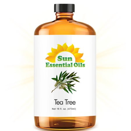 Bulk Tea Tree Oil - Ultra 16 Ounce - 100% Pure Essential Oil (Best 16 fl oz / 472ml) - Sun (Best Uses For Tea Tree Oil)