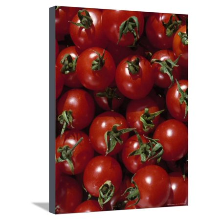 Cherry Tomatoes Stretched Canvas Print Wall Art By Mark Gibson - Gibson Cherry Nickels