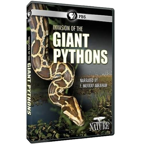 Nature: The Invasion Of The Giant Pythons