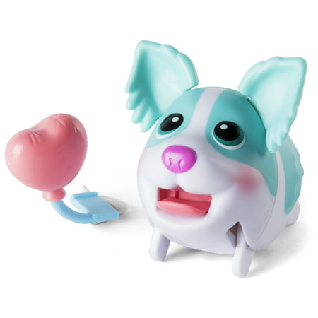 Chubby Puppies & Friends - Single Pack – Minty Collie