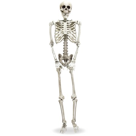 Jack Skeleton Decorations (Best Choice Products 5ft Full Body Hanging Posable Skull Skeleton Halloween Decoration w/ Movable Joints,)