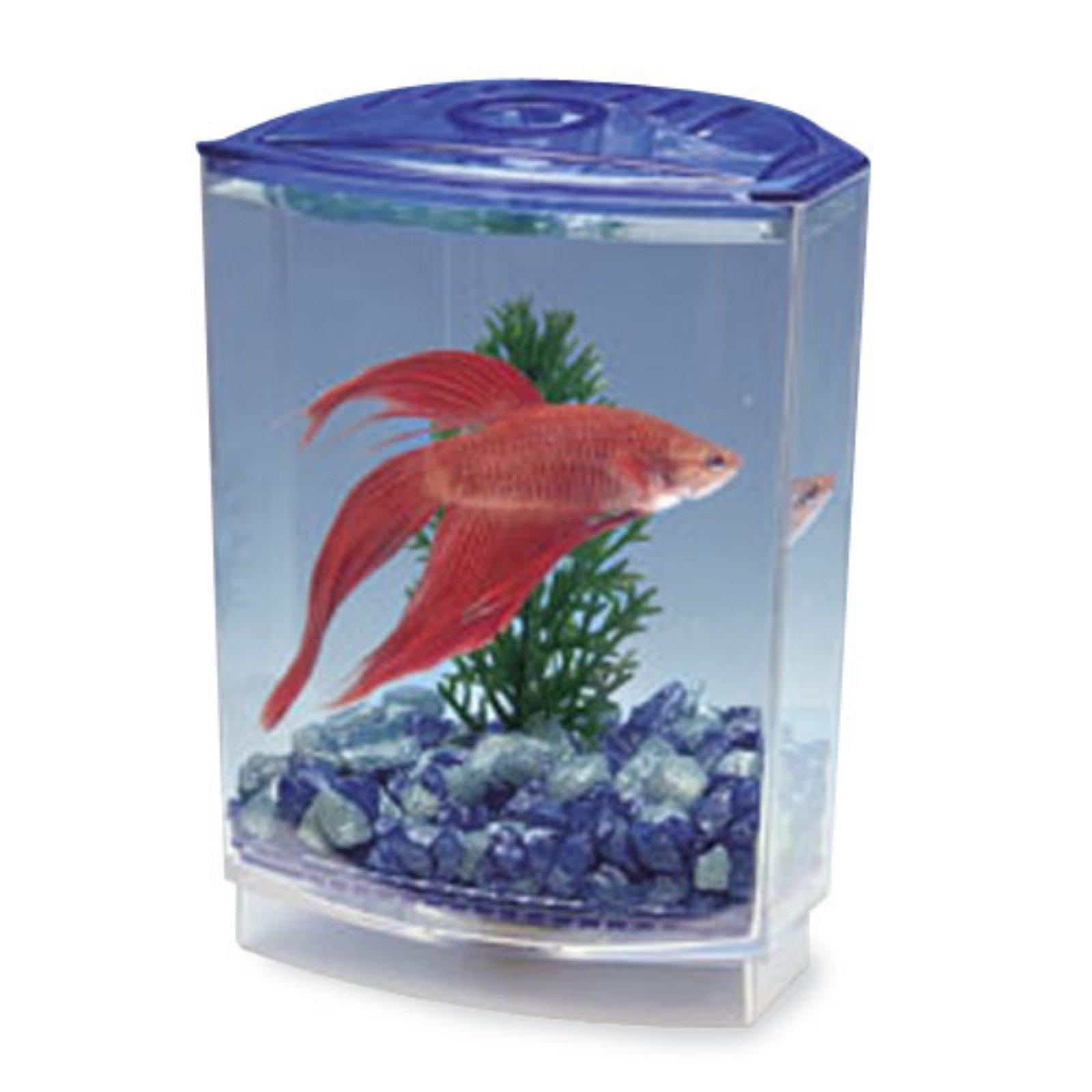 Penn Plax Betta Bow-Front Rectangular Fish Tank Kit