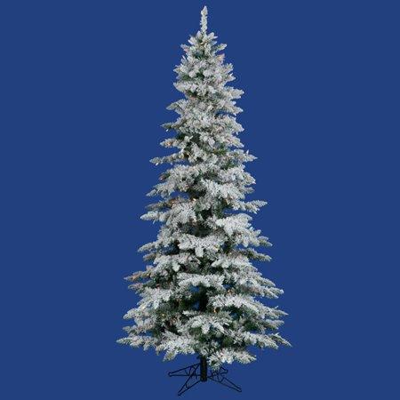 huge discount 5972b defae Vickerman 12 ft. Flocked Slim Utica Fir Multi LED Christmas Tree