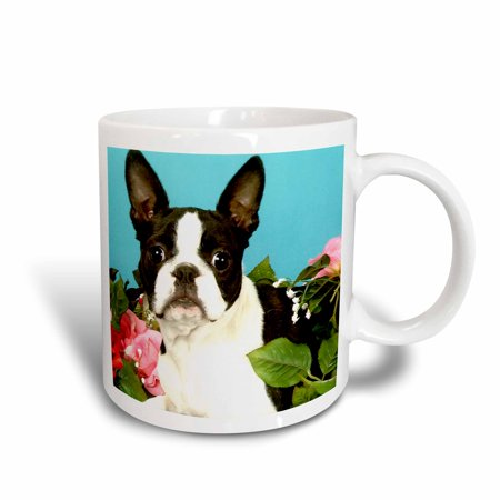 - 3dRose Emma Boston Terrier, Ceramic Mug, 11-ounce