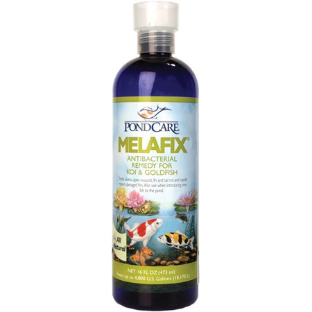 Pondcare 176B 16 Oz MelaFix Pond Antibacterial & Cleaner