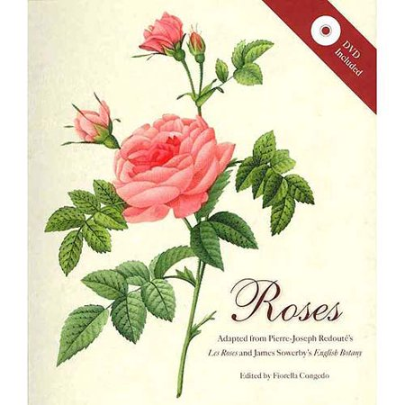 Roses Mini Archive With Dvd Walmart Com