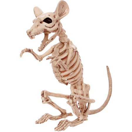 Crazybonez Skeleton Rat Halloween - Halloween Coloring Page Skeleton