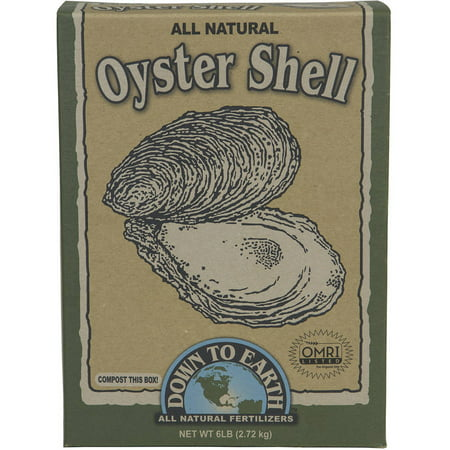 Down to Earth 07814 6 Lb All Natural Oyster Shell Flour - Oyster Mushroom Growing