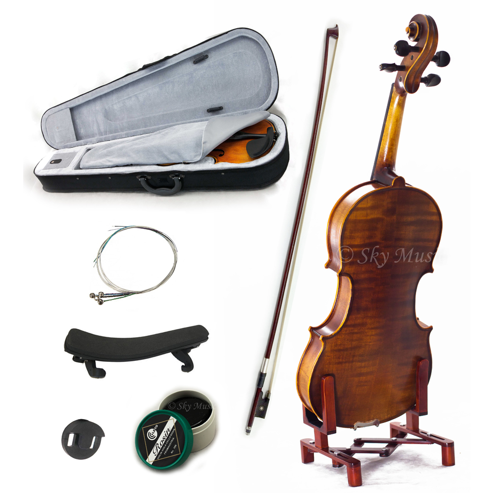SKY 4/4 Full Size SKYVN302 Intermediate Level Plus Violin with Case Bow and More