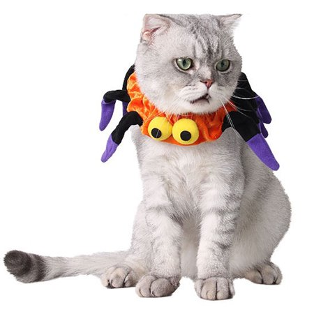Halloween Pet Costumes, Legendog Creepy Large Eyes Spider Neck Warmer Neck Protector Pet Outfit for Dogs & Cats