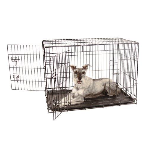 Tucker Murphy Pet Hollymead Double Door Pet Crate