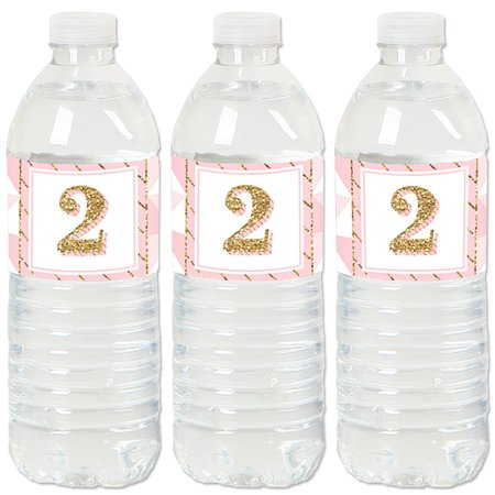 Two Much Fun - Girl - 2nd Birthday Party Water Bottle Sticker Labels - Set of 20