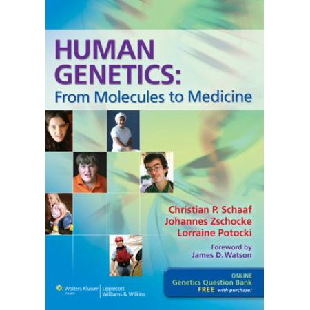 Human Genetics   From Molecules To Medicine