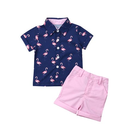 2PCS Toddler Kids Baby Boy Gentleman Clothes Shirt Tops Shorts Pants Formal Outfits 1-2 Years