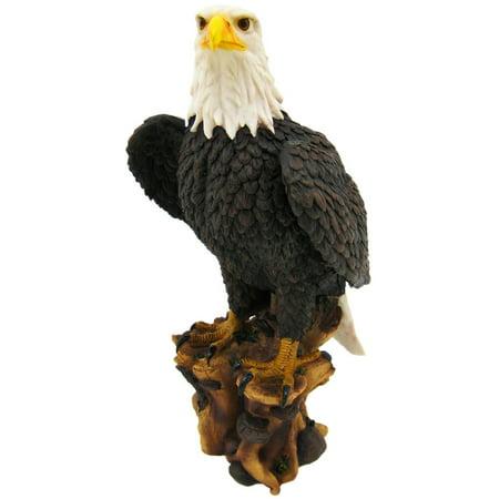 Juvenile American Bald Eagle (`American Pride` Bald Eagle Statue Nature Figure by Private)