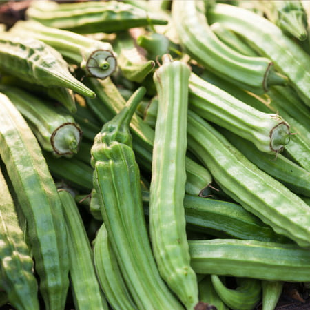 - Okra Garden Seeds - Emerald - 1 Oz - Heirloom, Non-GMO Vegetable Gardening Seeds - Open Pollinated - Abelmoschus esculentus