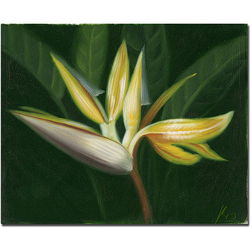 "Trademark Fine Art ""Lilies"" Canvas Art"