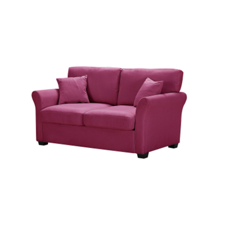 HUJUKULUDUSU Lounge Sofa With 2 Pillows Loveseat for Compact Living Space